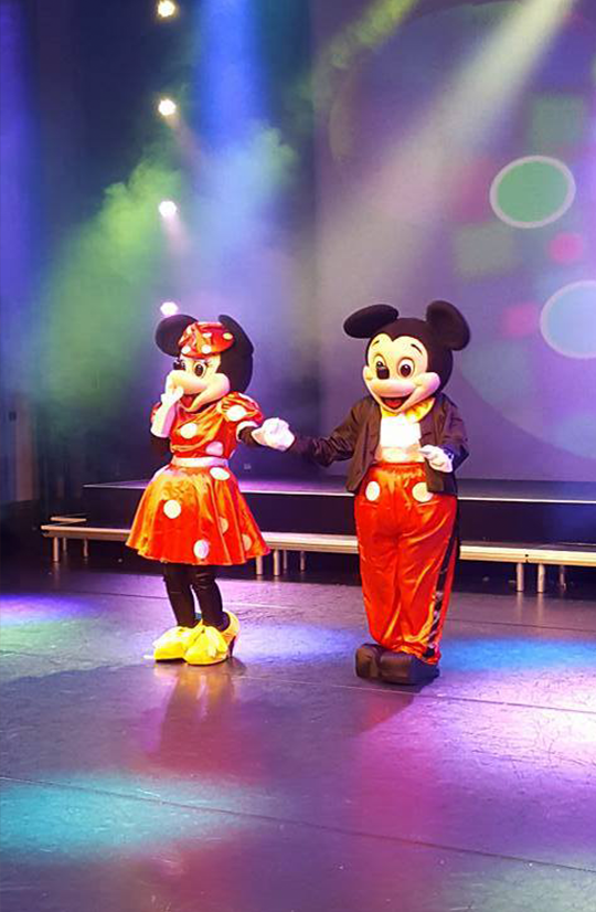 Minnie Mickey Gallery